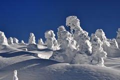 Пейзаж зимы рождества Стоковые Изображения RF