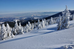 Пейзаж зимы рождества Стоковые Фото