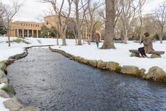 Пейзаж зимы университета Хоккаидо Стоковое фото RF