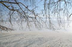 Пейзаж зимы Стоковая Фотография RF