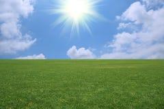 пейзаж злаковика стоковая фотография rf