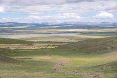 Пейзаж злаковика плато Стоковое Изображение