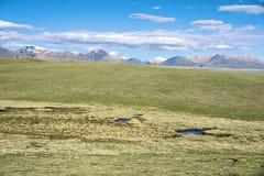 Пейзаж злаковика плато Стоковые Фотографии RF