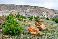 пейзаж каменистый Стоковое Изображение RF