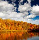 пейзаж листва Стоковая Фотография RF