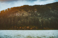 пейзаж Наклон-переноса с рекой и лесом на горе стоковая фотография rf