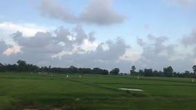 Пейзаж на пути от поезда видеоматериал
