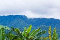 Пейзаж облака и горы стоковая фотография