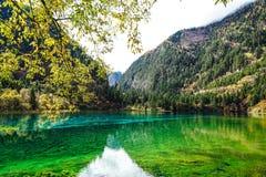 Пейзаж озера в лесе с красочными листьями и горой в осени Стоковое Изображение