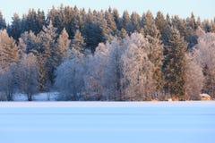 Пейзаж озера зим в Финляндии Стоковое Фото