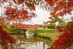 Пейзаж озера на осени в Киото, Японии стоковые фотографии rf