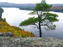 пейзаж озера Стоковые Фото
