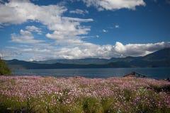 Пейзаж озера Lugu Стоковое Изображение