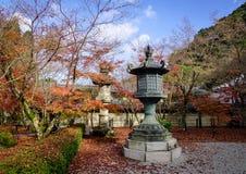 Пейзаж осени в Киото, Японии Стоковое фото RF