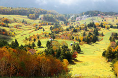 Пейзаж осени красочных лесов в долине в Shiga Kogen Стоковые Фото