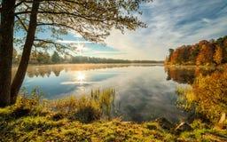 Пейзаж осени озера в октябре Стоковые Изображения