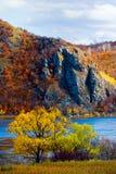 пейзаж осени Стоковые Изображения RF