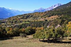 пейзаж осени Стоковые Фото