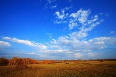 пейзаж осени Стоковое Изображение RF