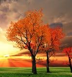 пейзаж осени Стоковое Изображение