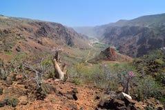 Пейзаж острова Сокотры, Йемен Стоковые Изображения RF