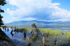Пейзаж парка языка hai, озера erhai, Dali, Юньнань, Китая стоковое изображение