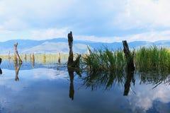 Пейзаж парка языка hai, озера erhai, Dali, Юньнань, Китая стоковые изображения rf