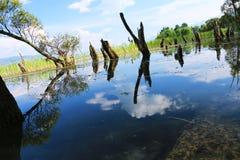 Пейзаж парка языка hai, озера erhai, Dali, Юньнань, Китая стоковое фото rf