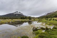 Пейзаж Патагонии Стоковая Фотография