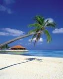 пейзаж пляжа Стоковое Изображение RF