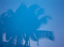 пейзаж пляжа Стоковые Изображения RF