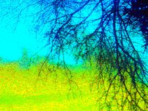пейзаж предпосылки Стоковые Изображения