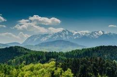 Пейзаж прикарпатских гор Стоковое фото RF