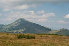 Пейзаж прикарпатской горы Стоковые Изображения RF