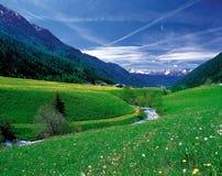 пейзаж природы Стоковое Фото