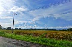 Пейзаж природ Стоковое Фото