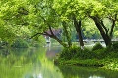 Пейзаж природного парка, Ханчжоу Стоковая Фотография