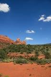 пейзаж пустыни Аризоны Стоковое Изображение