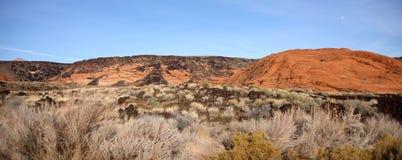 пейзаж пустыни Стоковые Фотографии RF
