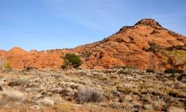 пейзаж пустыни Стоковая Фотография RF