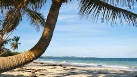 пейзаж пляжа тропический сток-видео