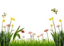 пейзаж сада идилличный Стоковые Изображения