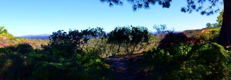 Пейзаж Сан-Диего стоковое фото rf