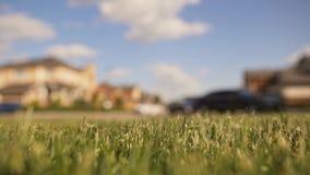 Пейзаж сельской местности, трава, маленькая девочка ехать ее велосипед в лете акции видеоматериалы