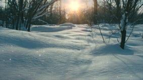 Пейзаж сказки снега и солнца сток-видео
