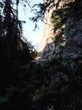Пейзаж скалистой горы в лесе стоковое фото