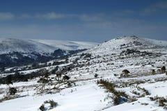 Пейзаж снега в национальном парке Dartmoor Стоковые Изображения RF