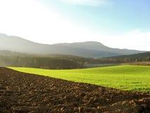 пейзаж солнечный стоковая фотография rf
