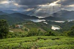 Пейзаж Тайваня красивый стоковые фото