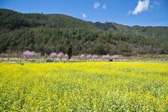 Пейзаж Тайваня красивый Стоковое Изображение